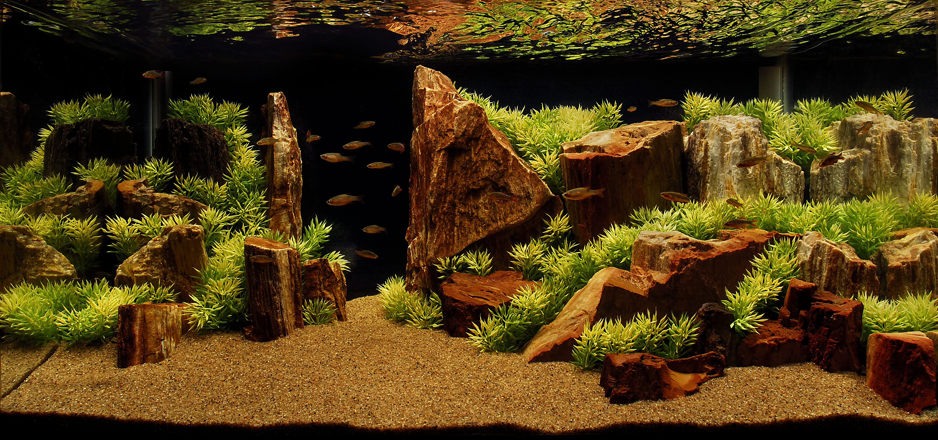 Here Is Some Layer/wall Aquascapes. The Problem Is You Would Have To Break  Apart Some Of Your Ohko Stones To Be Able To Create A Barrier.
